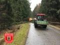 Baum_Grafenbuch_0301218_2